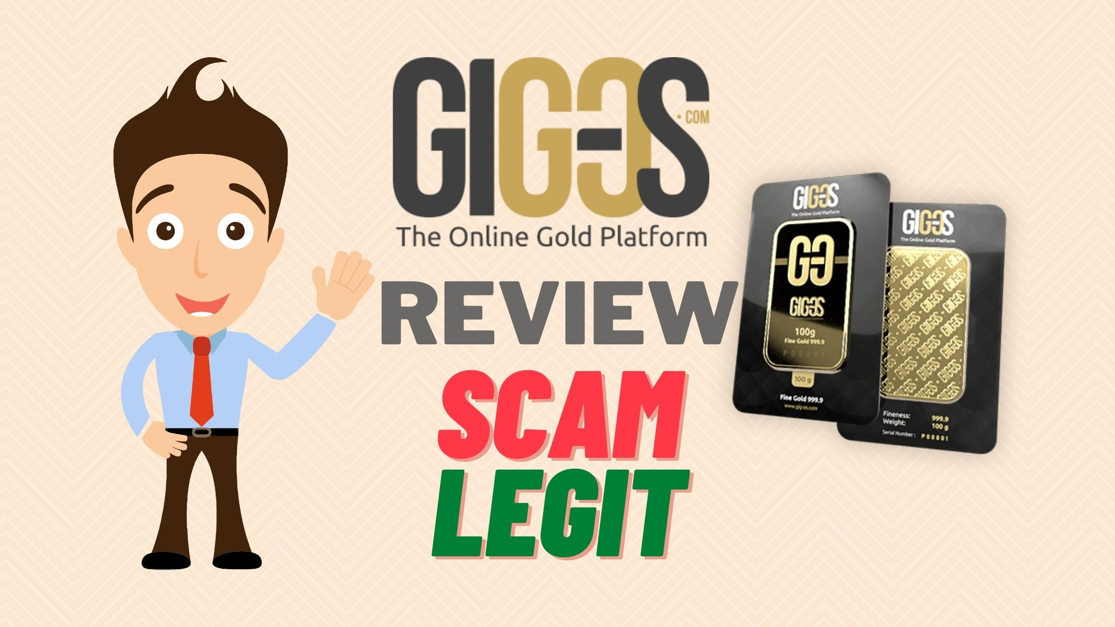 GIG-OS Review 2020: Scam or Legit?